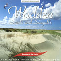 Sounds of the Earth: Wadden - Sands and Seagulls CD