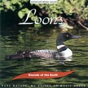 Sounds of the Earth: Loons CD
