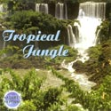 Nature's Rhythms: Tropical Jungle CD