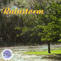 Nature's Rhythms: Rainstorm CD