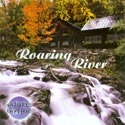 Nature's Rhythms: Roaring River CD
