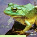 Earthscapes: Frogs CD